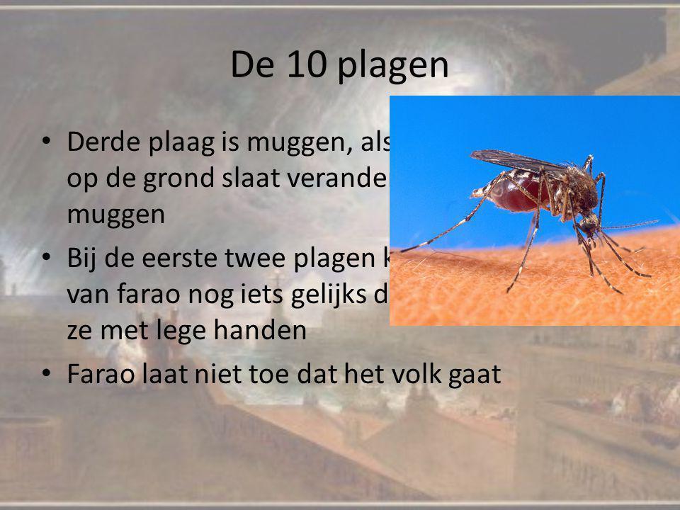 De 10 plagen Derde plaag is muggen, als Aaron met zijn staf op de grond slaat veranderd het stof in muggen Bij de eerste twee plagen konden de magiers