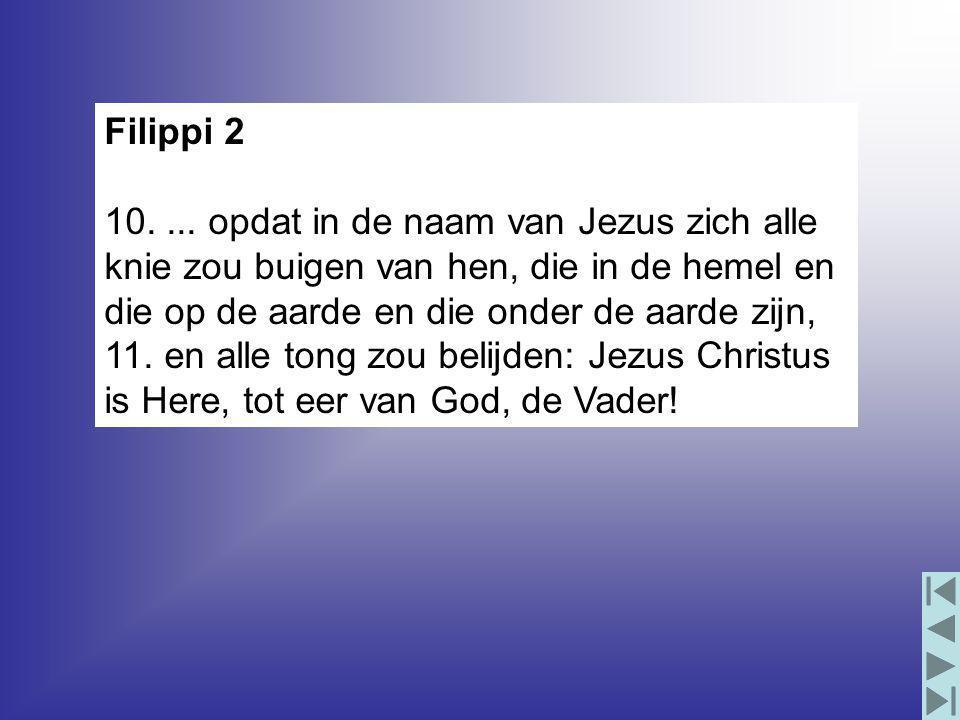Filippi 2 10....