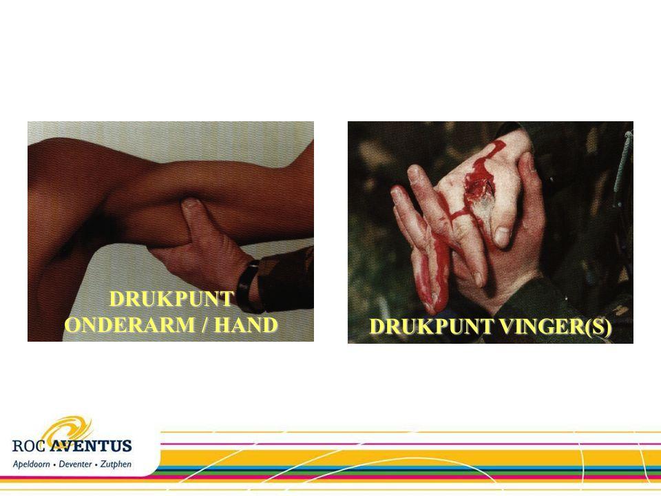 DRUKPUNT NEUS DRUKPUNT KAAK DRUKPUNT BOVENLIP DRUKPUNT OKSEL / BOVENARM