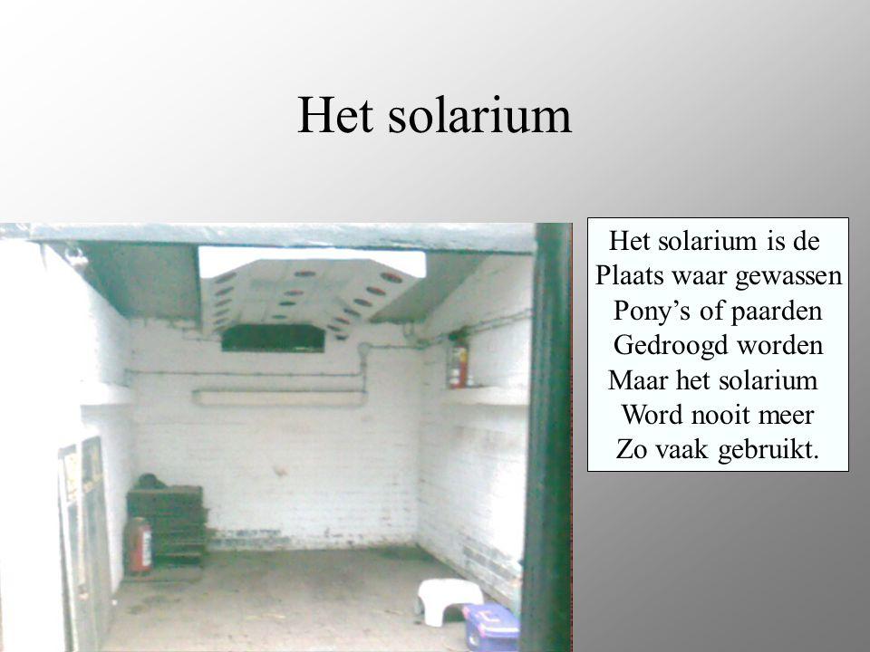 Het solarium Het solarium is de Plaats waar gewassen Pony's of paarden Gedroogd worden Maar het solarium Word nooit meer Zo vaak gebruikt.