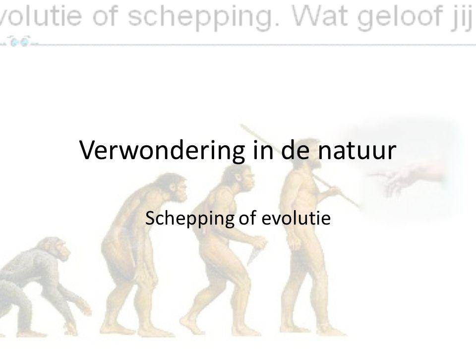 Verwondering in de natuur Schepping of evolutie