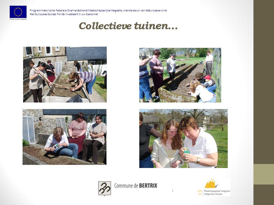 Collectieve tuinen... Programmatorische Federale Overheidsdienst MaatschappelijkeIntegratie, met de steun van deEuropese Unie Het Europees Sociaal Fon