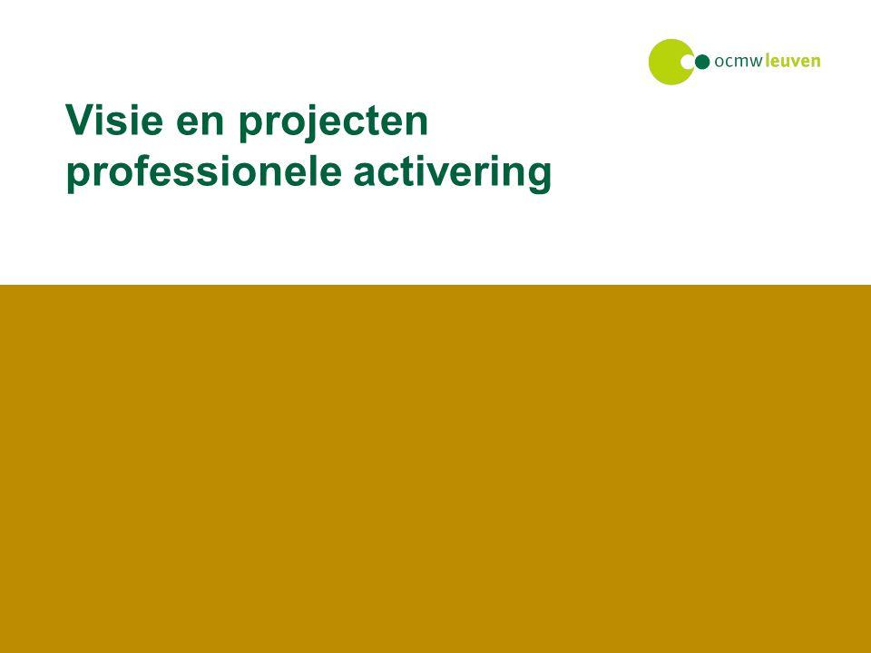 Visie en projecten professionele activering