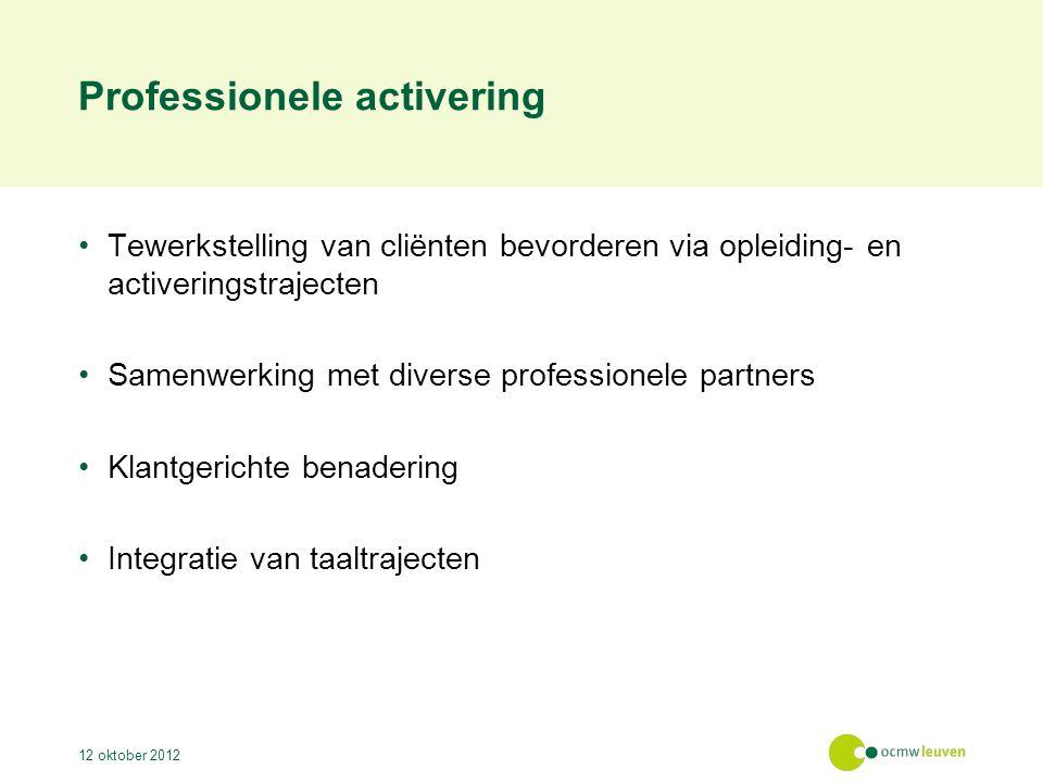 Professionele activering Tewerkstelling van cliënten bevorderen via opleiding- en activeringstrajecten Samenwerking met diverse professionele partners