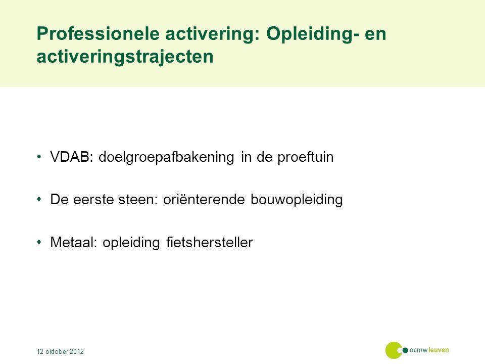 Professionele activering: Opleiding- en activeringstrajecten VDAB: doelgroepafbakening in de proeftuin De eerste steen: oriënterende bouwopleiding Metaal: opleiding fietshersteller