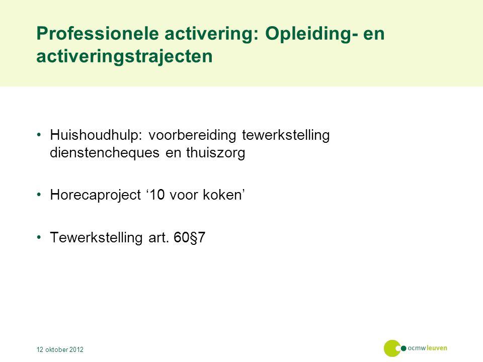 Professionele activering: Opleiding- en activeringstrajecten Huishoudhulp: voorbereiding tewerkstelling dienstencheques en thuiszorg Horecaproject '10