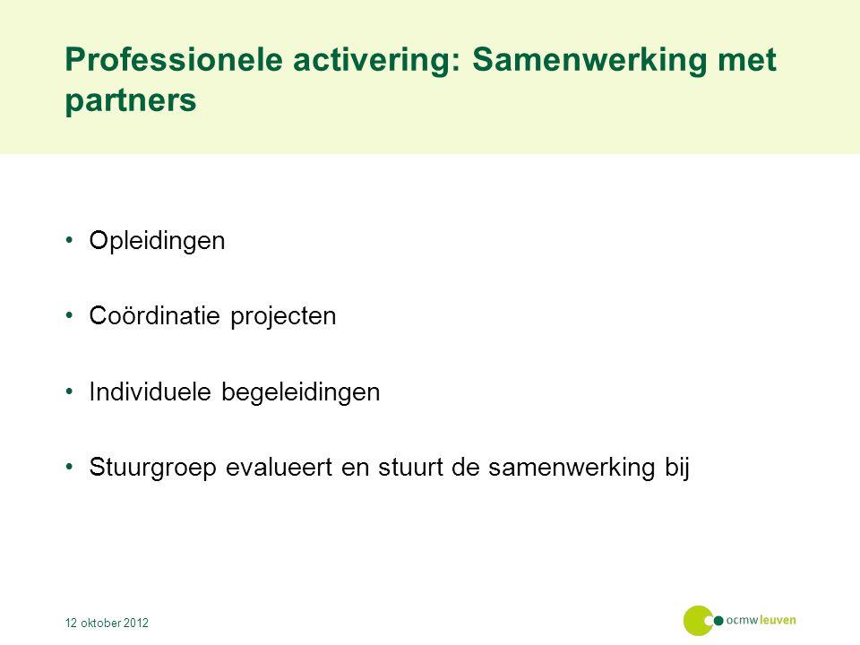Professionele activering: Samenwerking met partners Opleidingen Coördinatie projecten Individuele begeleidingen Stuurgroep evalueert en stuurt de samenwerking bij 12 oktober 2012