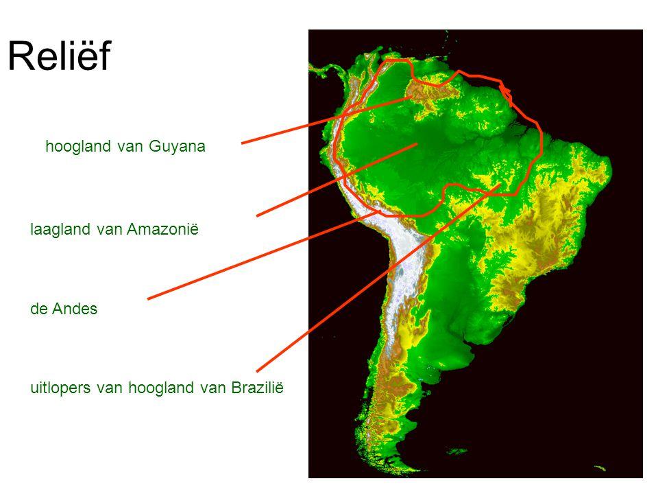 Reliëf hoogland van Guyana laagland van Amazonië de Andes uitlopers van hoogland van Brazilië