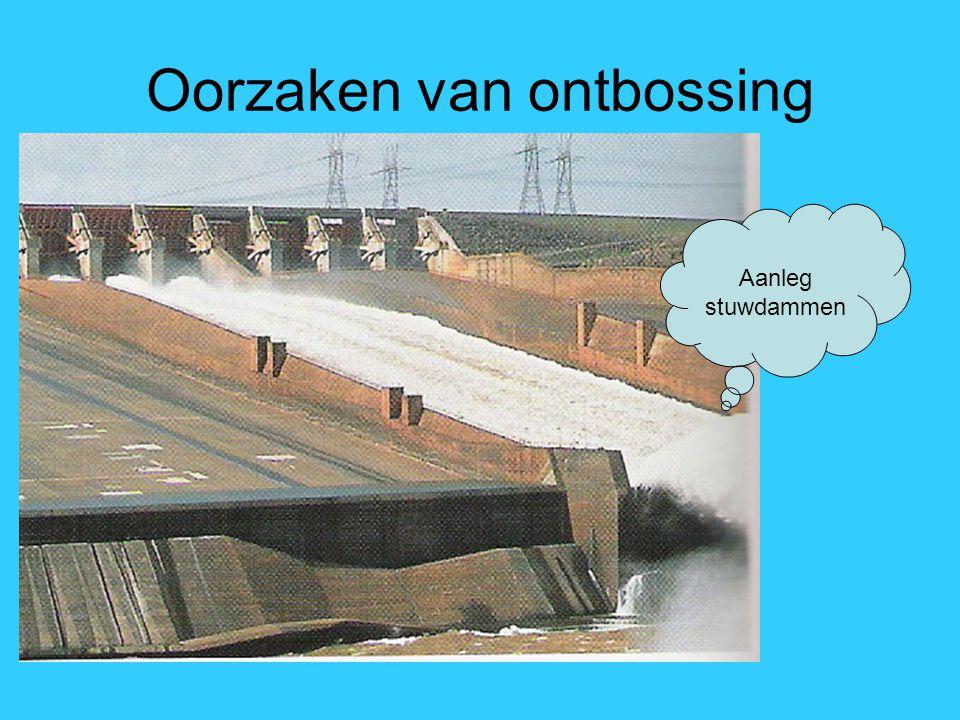 Aanleg stuwdammen Oorzaken van ontbossing