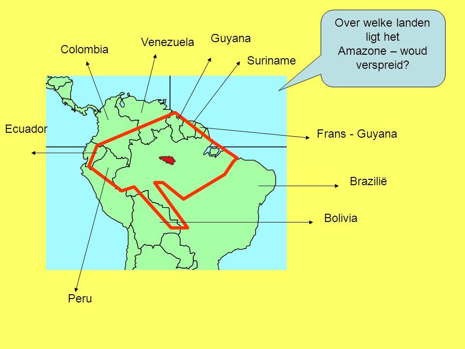 Over welke landen ligt het Amazone – woud verspreid? Colombia Venezuela Guyana Suriname Frans - Guyana Brazilië Peru Bolivia Ecuador
