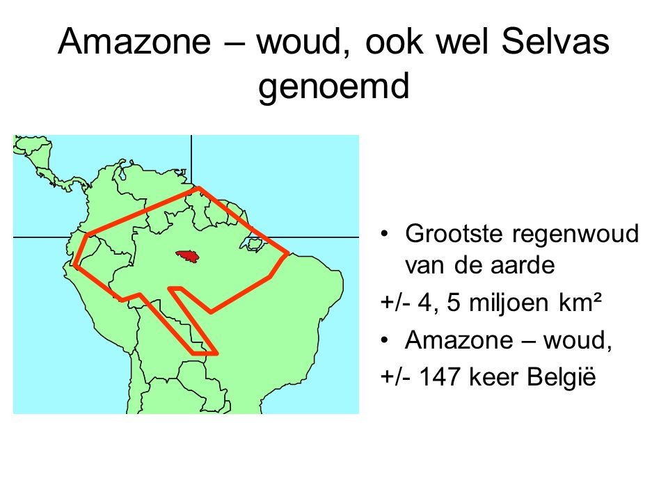 Amazone – woud, ook wel Selvas genoemd Grootste regenwoud van de aarde +/- 4, 5 miljoen km² Amazone – woud, +/- 147 keer België