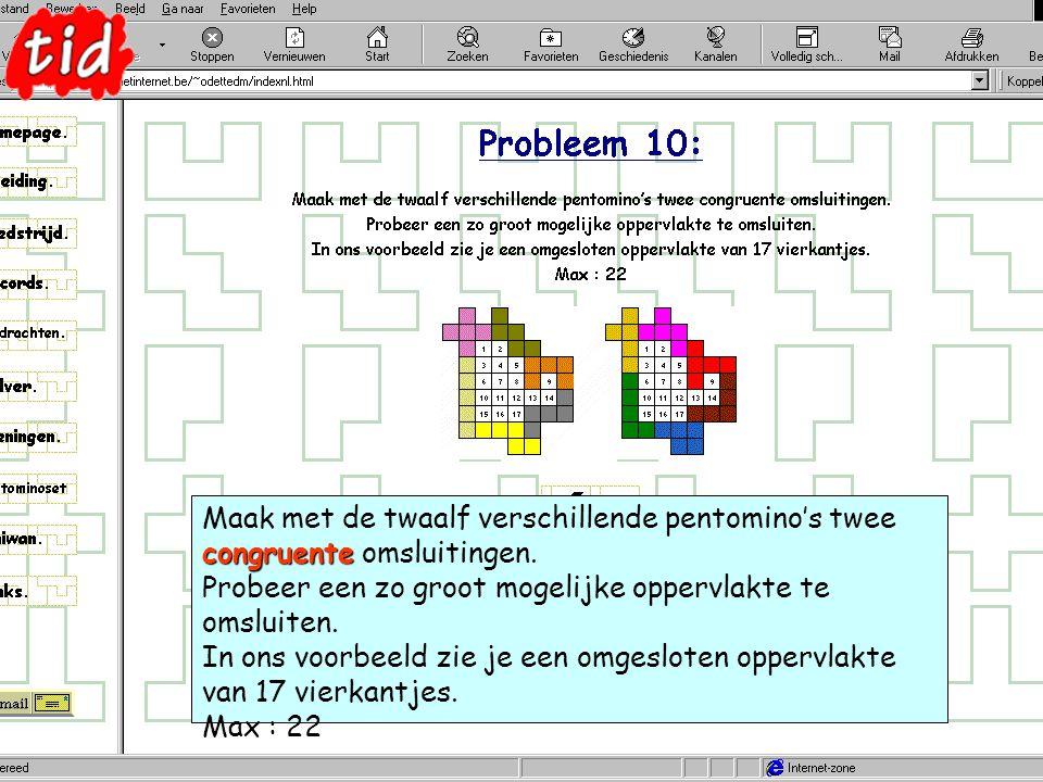 congruente Maak met de twaalf verschillende pentomino's twee congruente omsluitingen.