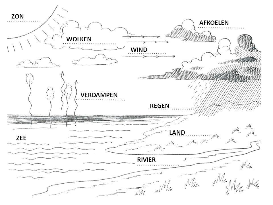 De weg van het water: schrijf de zinnen in de juiste volgorde.