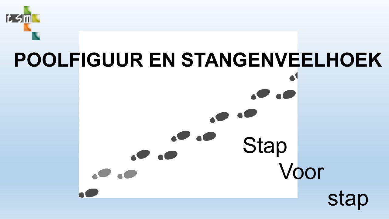 POOLFIGUUR EN STANGENVEELHOEK Stap Voor stap