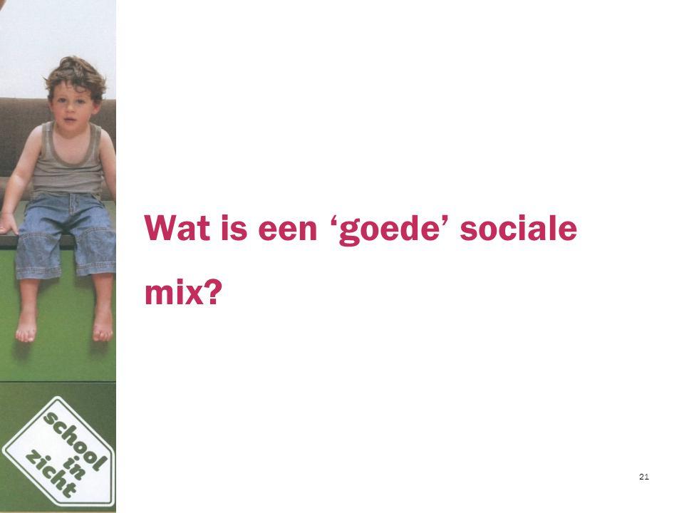 Wat is een 'goede' sociale mix? 21