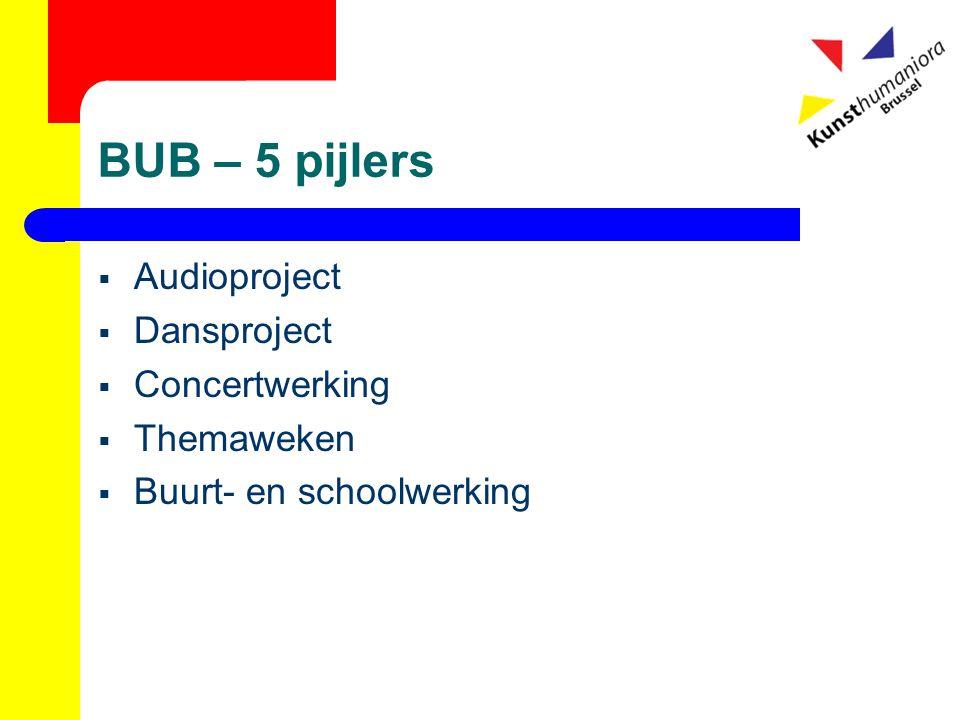 BUB – 5 pijlers  Audioproject  Dansproject  Concertwerking  Themaweken  Buurt- en schoolwerking