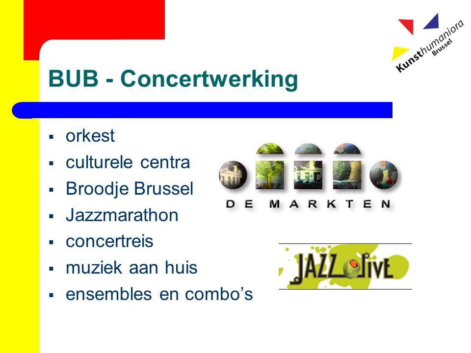 BUB - Concertwerking  orkest  culturele centra  Broodje Brussel  Jazzmarathon  concertreis  muziek aan huis  ensembles en combo's