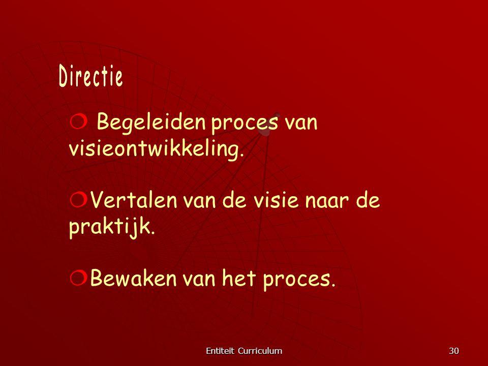 Entiteit Curriculum 30  Begeleiden proces van visieontwikkeling.  Vertalen van de visie naar de praktijk.  Bewaken van het proces.