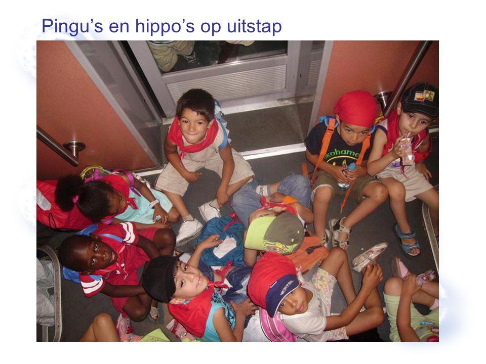 Pingu's en hippo's op uitstap