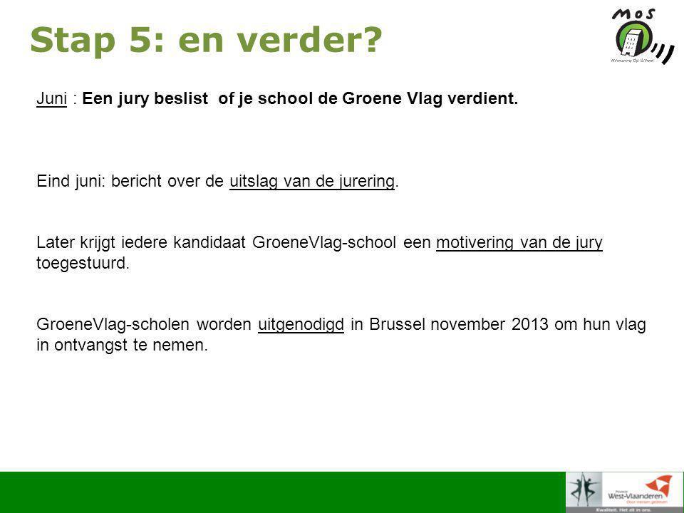 Stap 5: en verder. Juni : Een jury beslist of je school de Groene Vlag verdient.