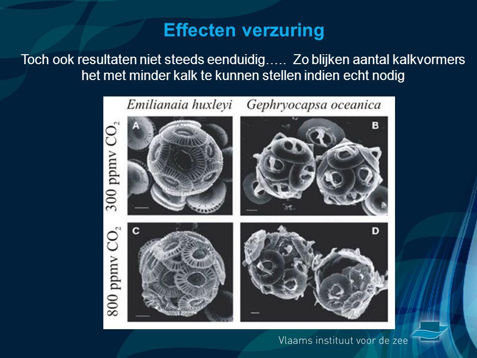 VormingPlus Oostende 29 april 08 Effecten verzuring Toch ook resultaten niet steeds eenduidig….. Zo blijken aantal kalkvormers het met minder kalk te