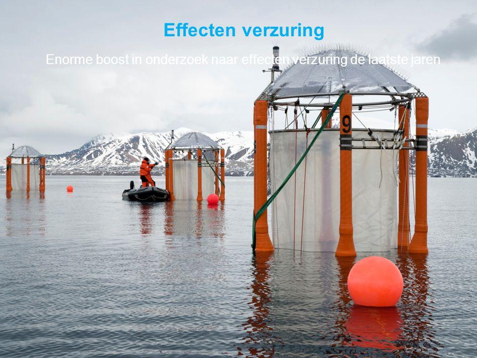 VormingPlus Oostende 29 april 08 Effecten verzuring Enorme boost in onderzoek naar effecten verzuring de laatste jaren