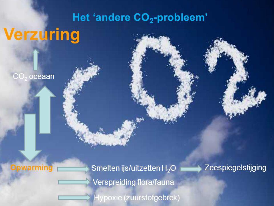 VormingPlus Oostende 29 april 08 Het 'andere CO 2 -probleem' Opwarming Smelten ijs/uitzetten H 2 O Zeespiegelstijging Verspreiding flora/fauna Hypoxie (zuurstofgebrek) CO 2 oceaan Verzuring