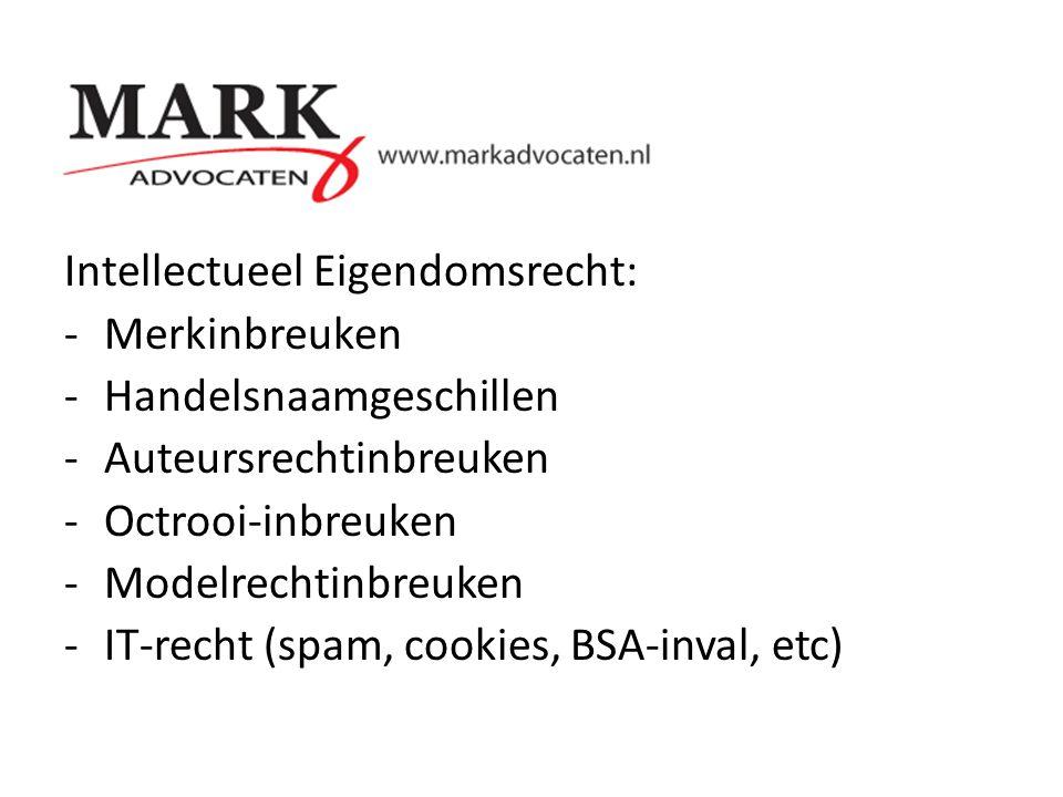 Intellectueel Eigendomsrecht: -Merkinbreuken -Handelsnaamgeschillen -Auteursrechtinbreuken -Octrooi-inbreuken -Modelrechtinbreuken -IT-recht (spam, co
