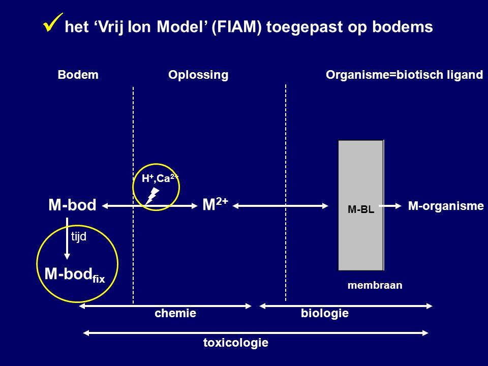 M 2+ M-organisme M-bod M-BL membraan BodemOplossingOrganisme=biotisch ligand chemiebiologie toxicologie H +,Ca 2+ M-bod fix tijd het 'Vrij Ion Model' (FIAM) toegepast op bodems
