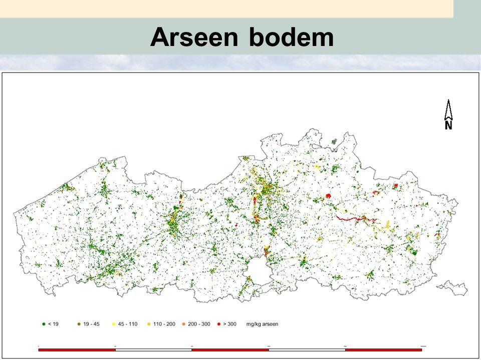 Arseen bodem