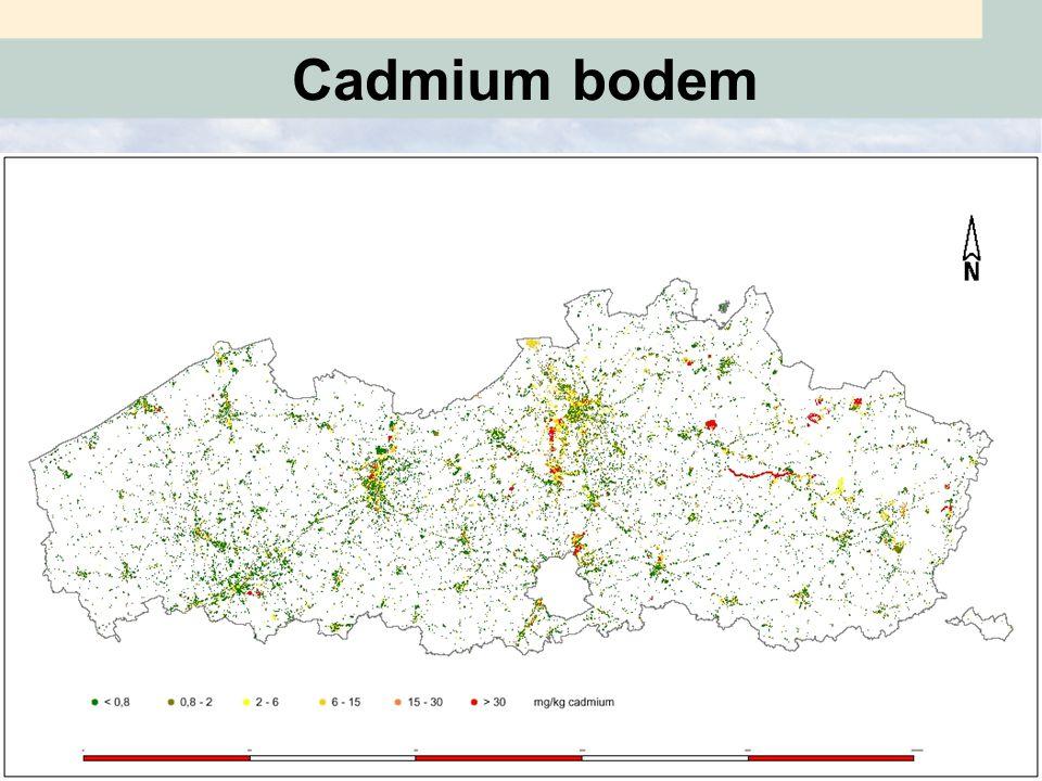 Cadmium grondwater