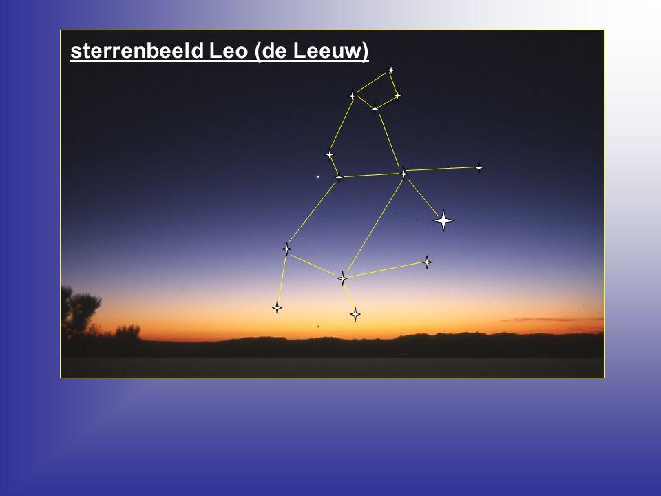 sterrenbeeld Leo (de Leeuw)