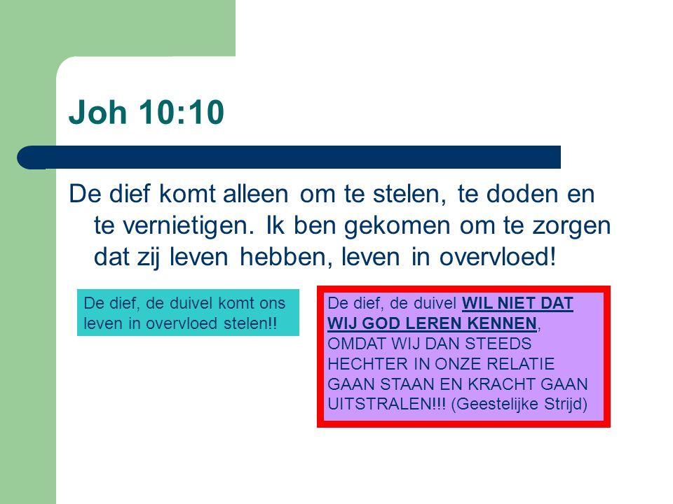 Joh 10:10 De dief komt alleen om te stelen, te doden en te vernietigen.