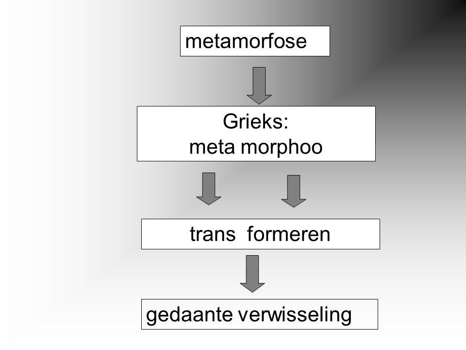 metamorfose Grieks: meta morphoo trans formeren gedaante verwisseling