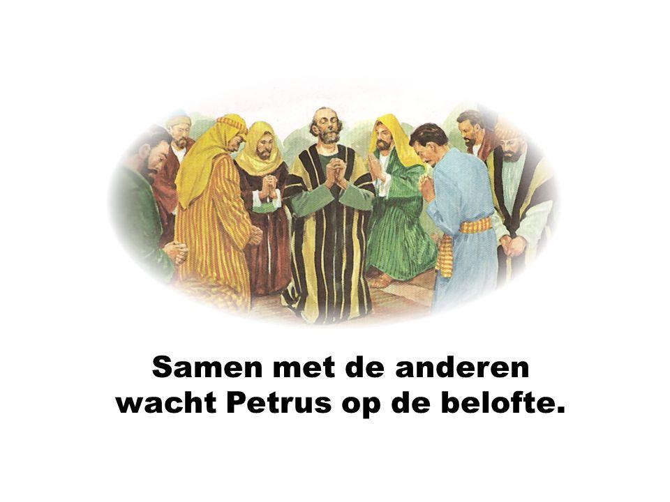 Samen met de anderen wacht Petrus op de belofte.