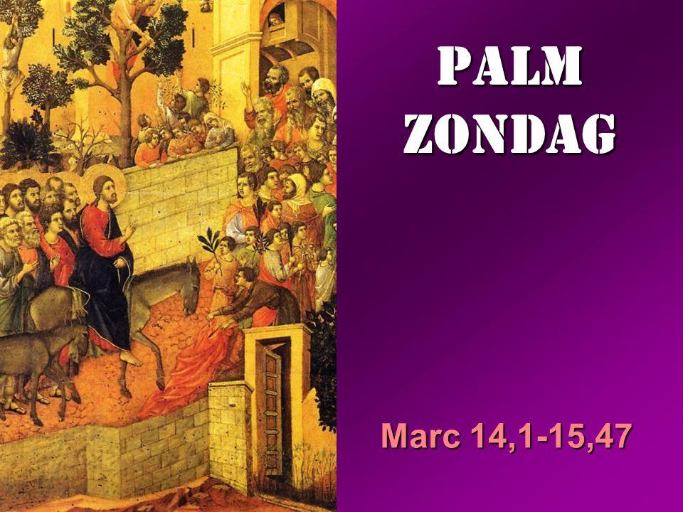 Jezus zei: 'Dat ben ik, en u zult de Mensenzoon aan de rechterhand van de Machtige zien zitten en hem zien komen op de wolken van de hemel.' De hogepriester scheurde zijn kleren en zei: 'Waarvoor hebben we nog getuigen nodig.