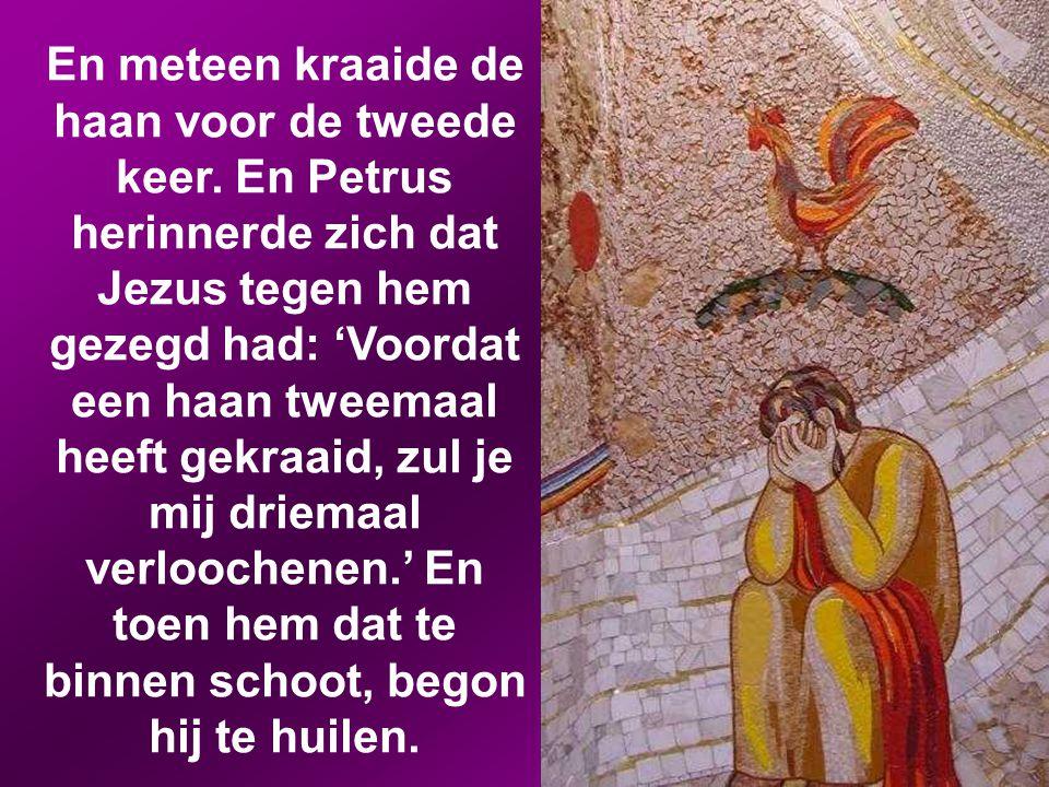 En algauw zeiden ook de omstanders tegen Petrus: 'Je bent wel degelijk een van hen, jij komt immers ook uit Galilea.' Maar hij begon te vloeken en zwo