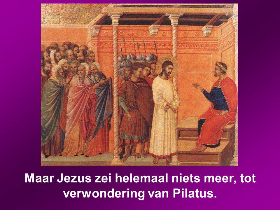 Pilatus vroeg hem: 'Bent u de koning van de Joden?' Hij antwoordde: 'U zegt het.' De hogepriesters brachten allerlei beschuldigingen tegen hem in. Pil