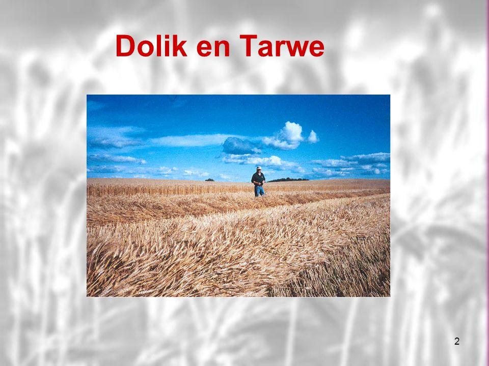 2 Dolik en Tarwe