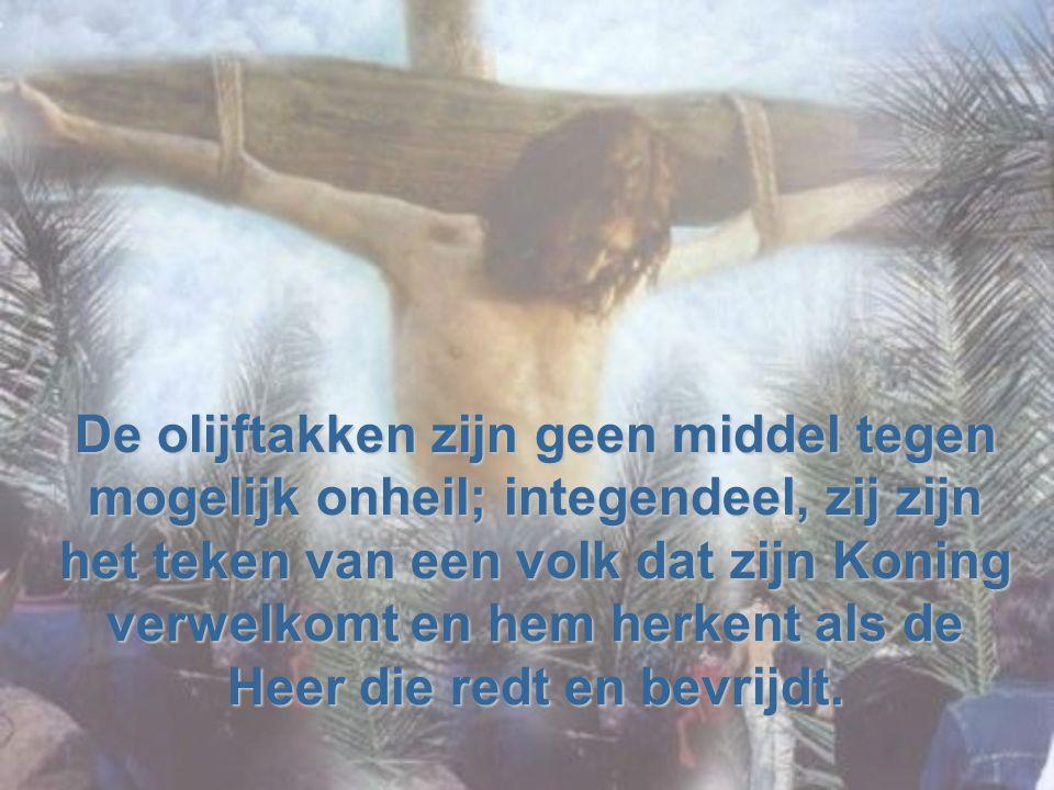HET MYSTERIE VAN HET KRUIS. heeft meer aandacht nodig dan de palmprocessie als hoogtepunt van de liturgie van het Woord die de lezing van het Lijdensv