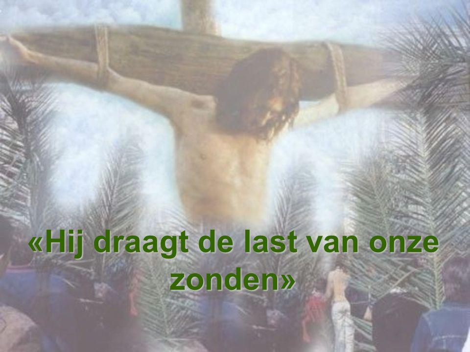 Op het kruis sterven alle valse beelden van God die de menselijke geest heeft voortgebracht en die wij, misschien, onbewust verder doorgeven.