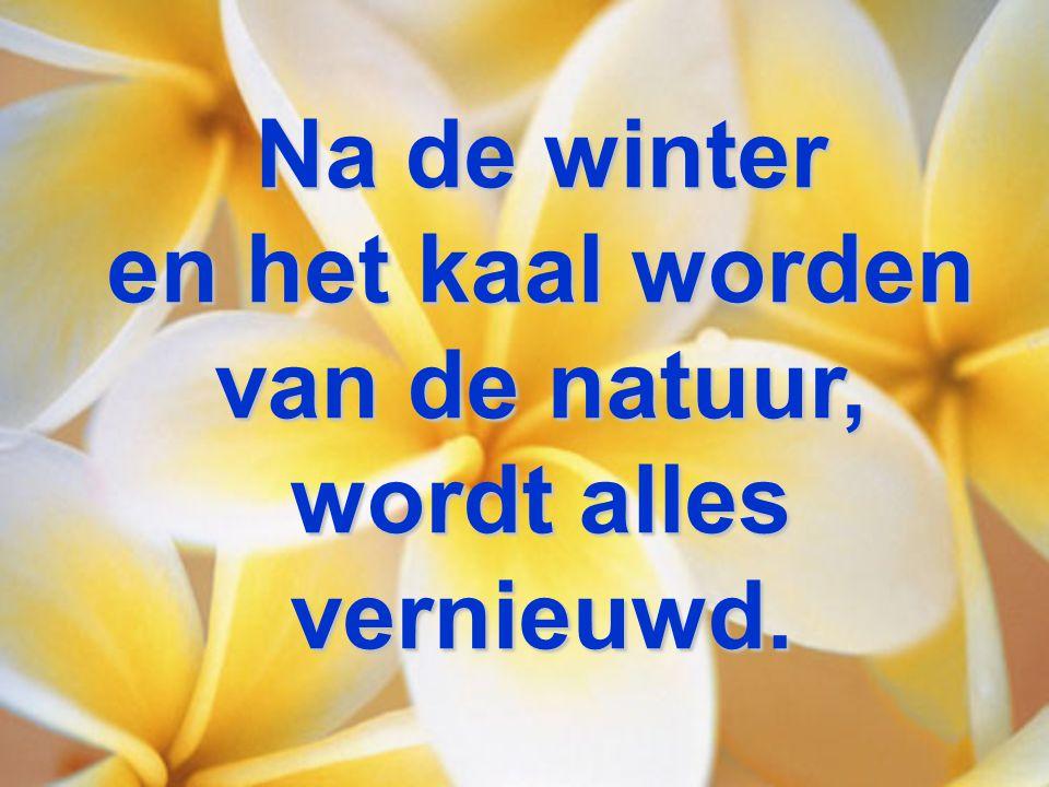 Na de winter en het kaal worden van de natuur, wordt alles vernieuwd.