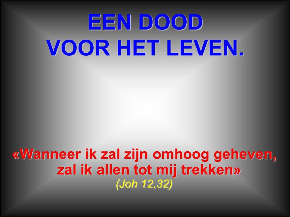 De gekruisigde Jezus is «het ware Paaslam», het verbond met God.
