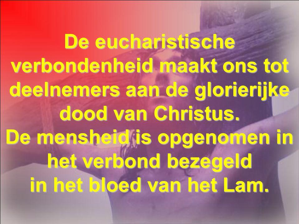 De aanbidding van het kruis is het betekenisvolle antwoord op deze geweldige gave. Zo wordt de profetie waar: «Zij richten hun blik op hem die zij doo