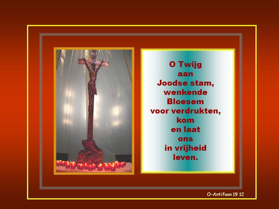 O-Antifoon 18 12 O Heer, Bewaarder van Israëls huis veilige Weg, kom en koester ons in uw alomvattende armen.