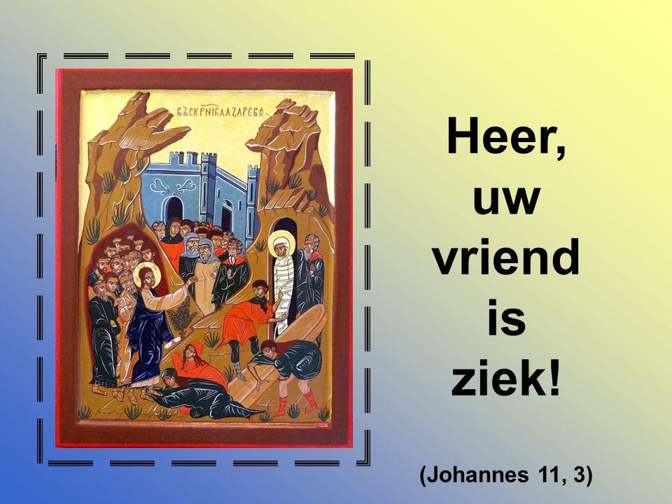 Heer, uw vriend is ziek! (Johannes 11, 3)