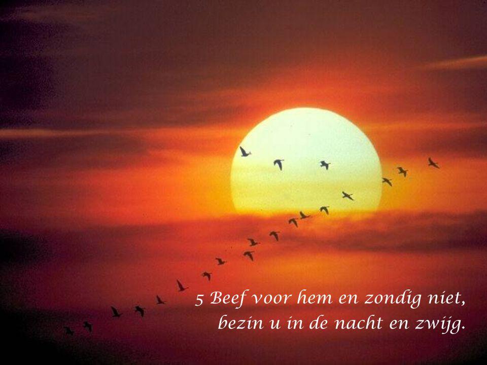 5 Beef voor hem en zondig niet, bezin u in de nacht en zwijg.