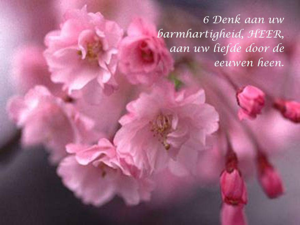 5 Wijs mij de weg van uw waarheid en onderricht mij, want u bent de God die mij redt, op u blijf ik hopen, elke dag weer.