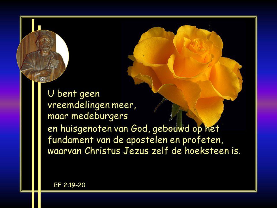 Pe 1:3-5 In Gods kracht geborgen door het geloof, wachten wij op de redding die al gereed ligt om op het einde van de tijd geopenbaard te worden.