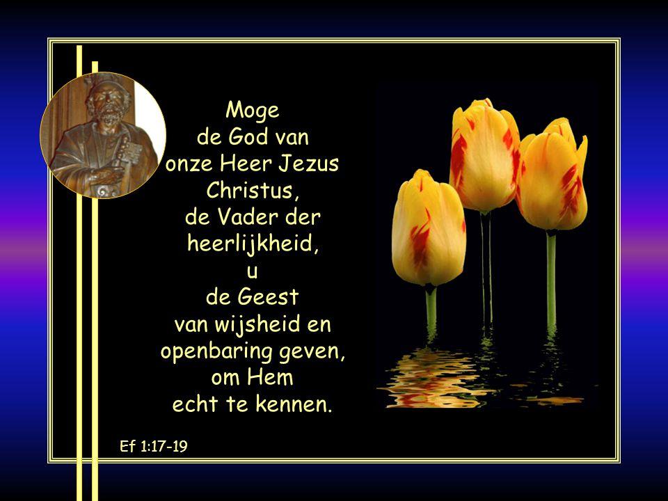 Moge de God van onze Heer Jezus Christus, de Vader der heerlijkheid, u de Geest van wijsheid en openbaring geven, om Hem echt te kennen.